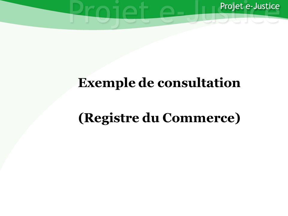 Projet e-JusticeYounès EL MECHRAFIPage n°15 Exemple de consultation (Registre du Commerce)