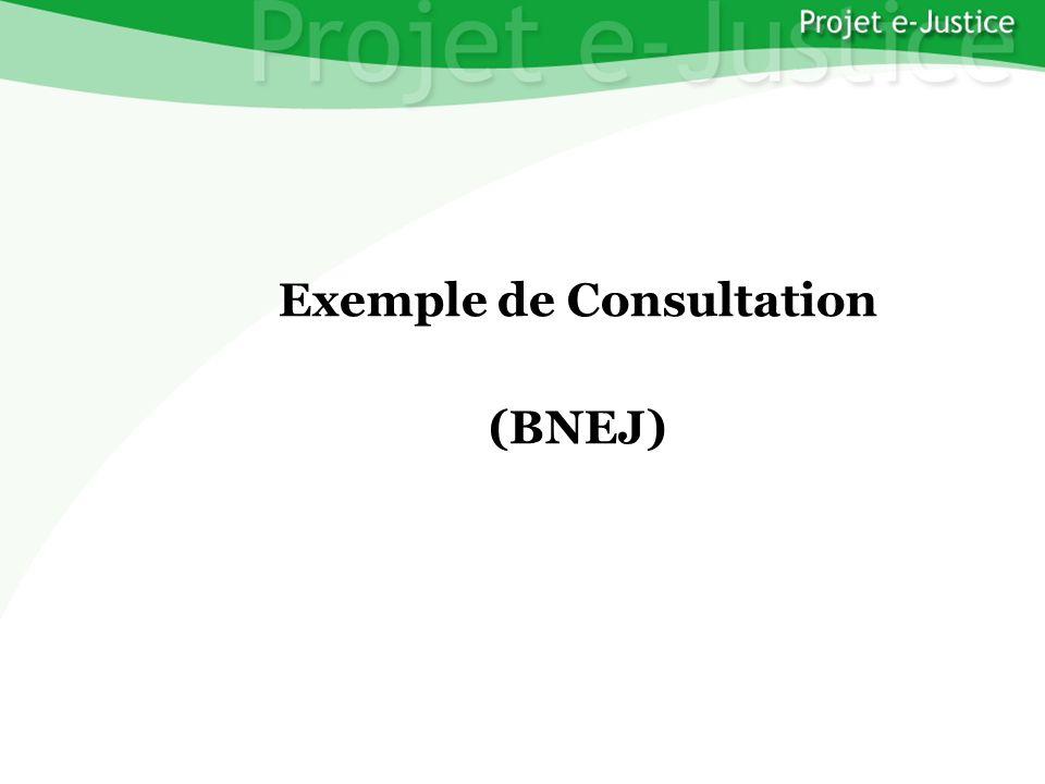 Projet e-JusticeYounès EL MECHRAFIPage n°28 Exemple de Consultation (BNEJ)
