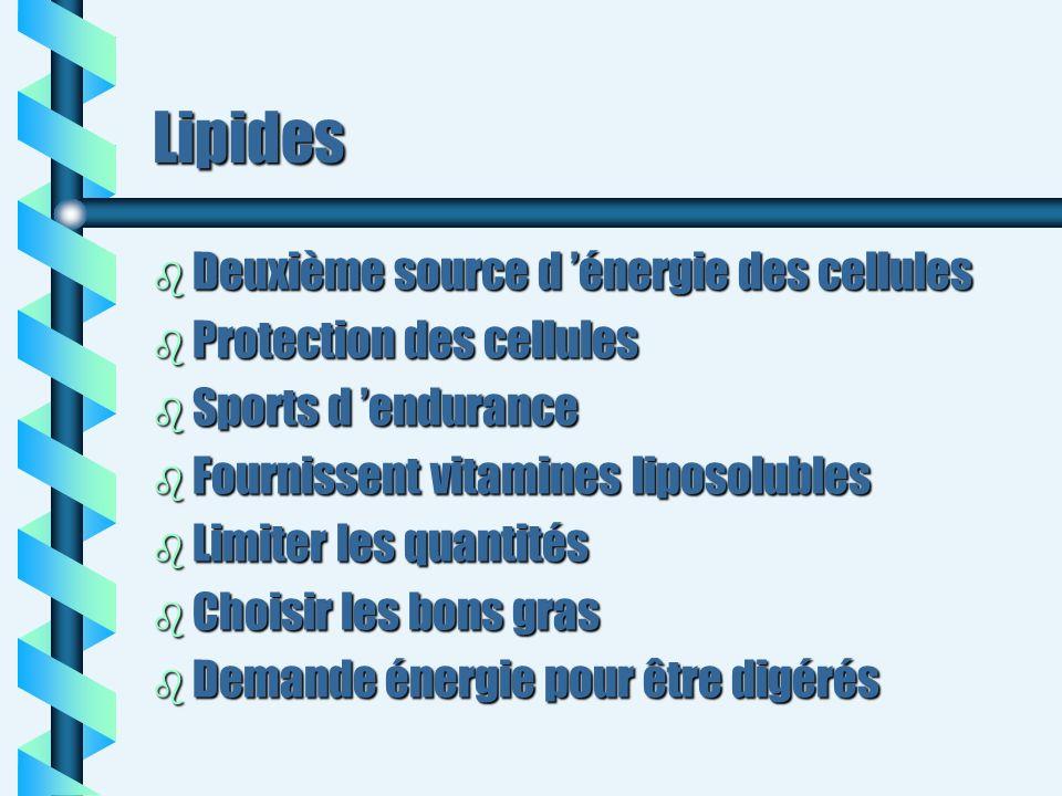 Lipides b Deuxième source d énergie des cellules b Protection des cellules b Sports d endurance b Fournissent vitamines liposolubles b Limiter les qua