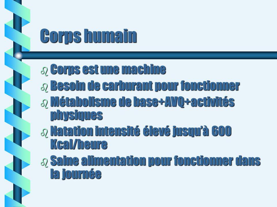 Corps humain b Corps est une machine b Besoin de carburant pour fonctionner b Métabolisme de base+AVQ+activités physiques b Natation intensité élevé j