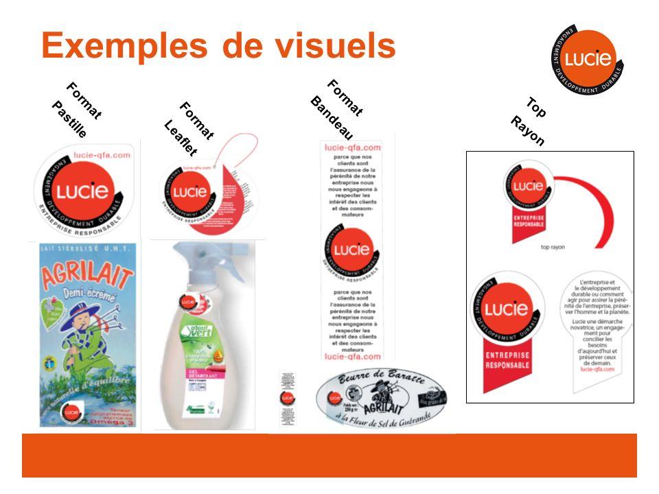 Format Pastille Format Leaflet Format Bandeau Top Rayon Exemples de visuels