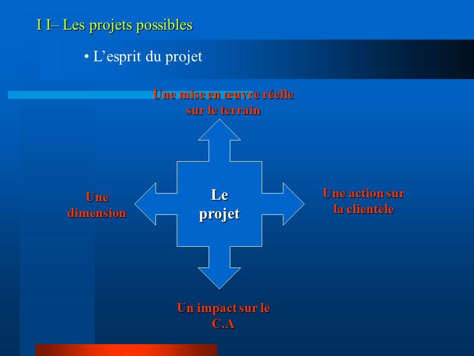 I I– Les projets possibles Lesprit du projet Le projet Une mise en œuvre réelle sur le terrain Une action sur la clientèle Un impact sur le C.A Une di