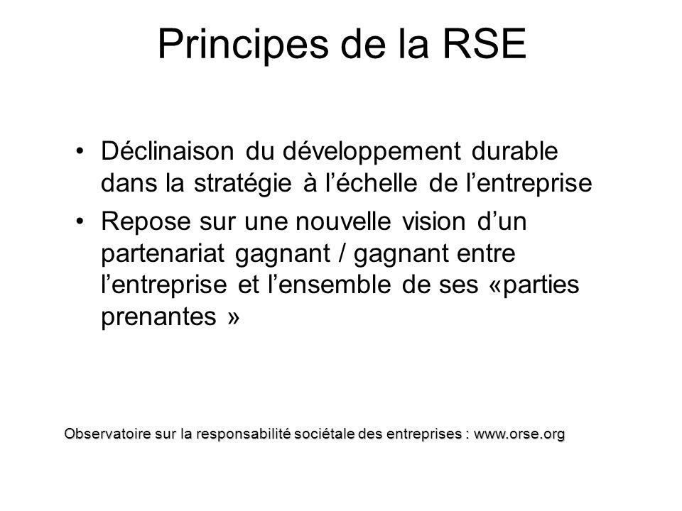 RSE : pôle économique Performance économique classique , mais aussi capacité de contribuer au développement économique de la zone d implantation de l entreprise et celui de ces parties prenantes, respect des principes de saine concurrence (absence de corruption, d entente, de position dominante).