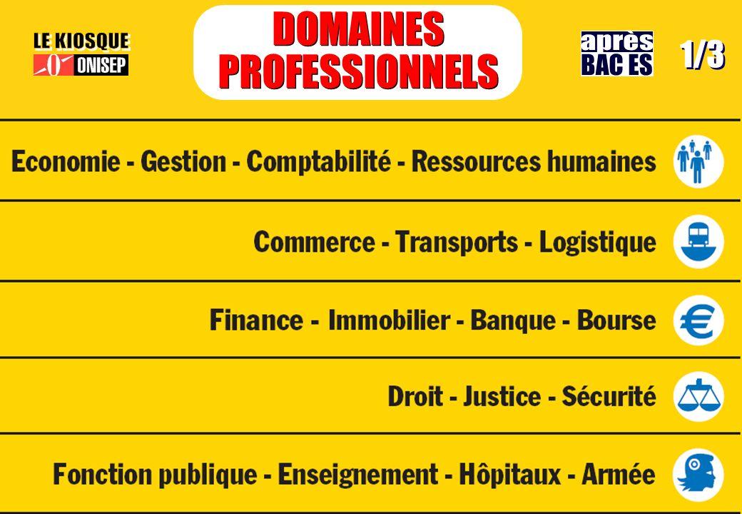 DOMAINES PROFESSIONNELS DOMAINES PROFESSIONNELS 1/3