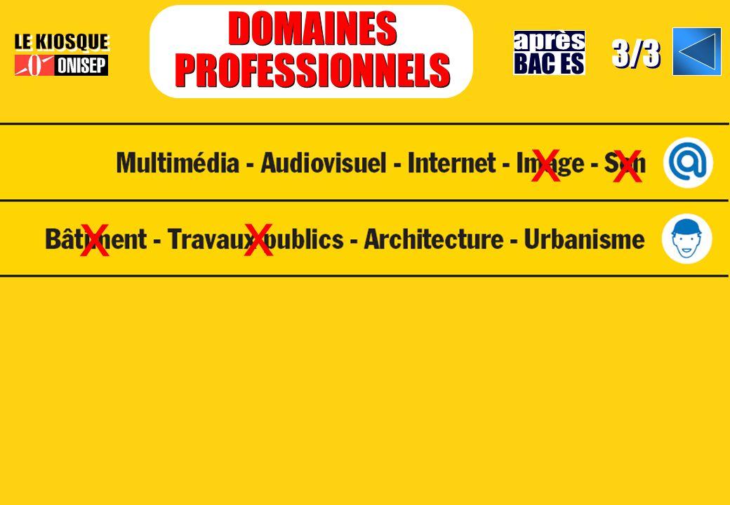 DOMAINES PROFESSIONNELS DOMAINES PROFESSIONNELS 3/3 x x x x