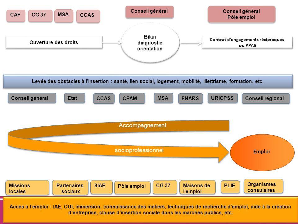 www.cg37.fr Accès à lemploi : IAE, CUI, immersion, connaissance des métiers, techniques de recherche demploi, aide à la création dentreprise, clause d