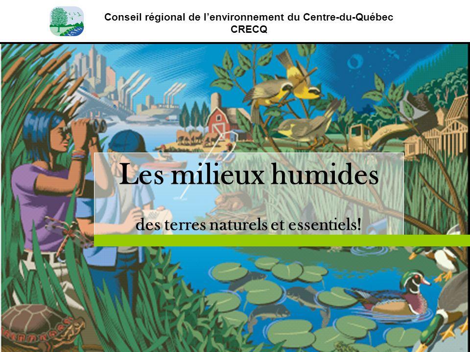 Conseil régional de lenvironnement du Centre-du-Québec CRECQ Les milieux humides des terres naturels et essentiels!