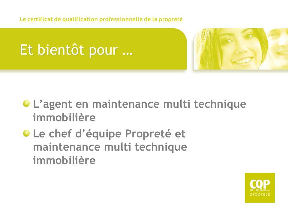 Et bientôt pour … Lagent en maintenance multi technique immobilière Le chef déquipe Propreté et maintenance multi technique immobilière