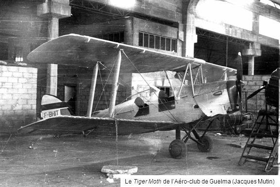 Le Tiger Moth de lAéro-club de Guelma (Jacques Mutin)
