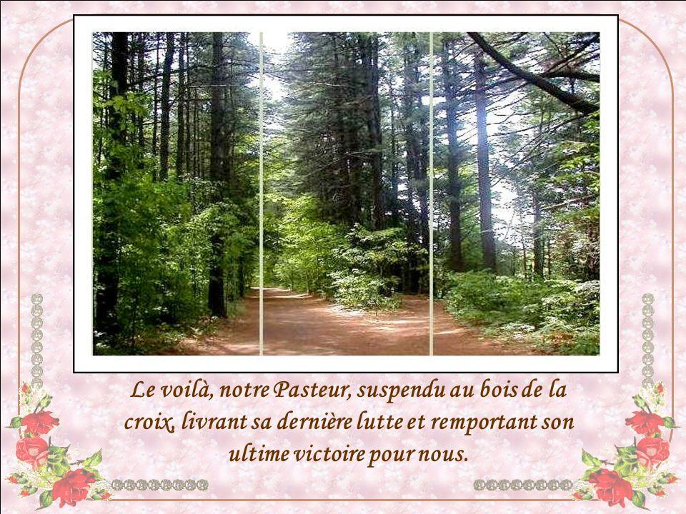 Le voilà, notre Pasteur, suspendu au bois de la croix, livrant sa dernière lutte et remportant son ultime victoire pour nous.