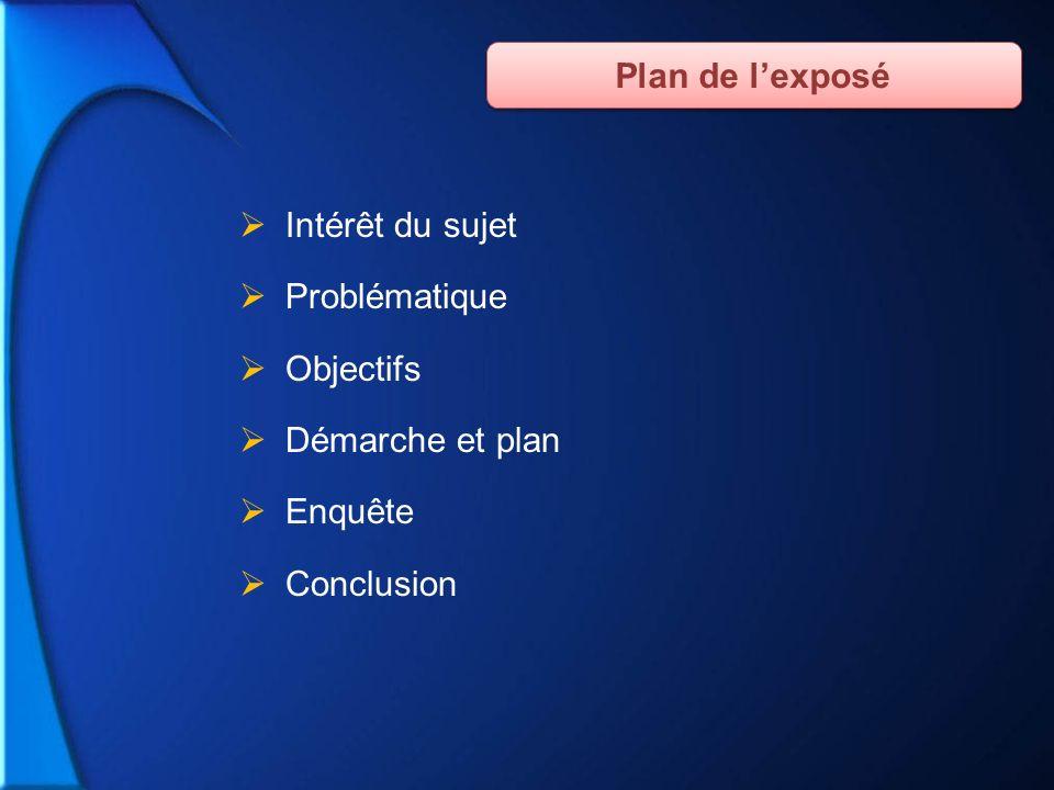 Intérêt du sujet Problématique Objectifs Démarche et plan Enquête Conclusion Plan de lexposé