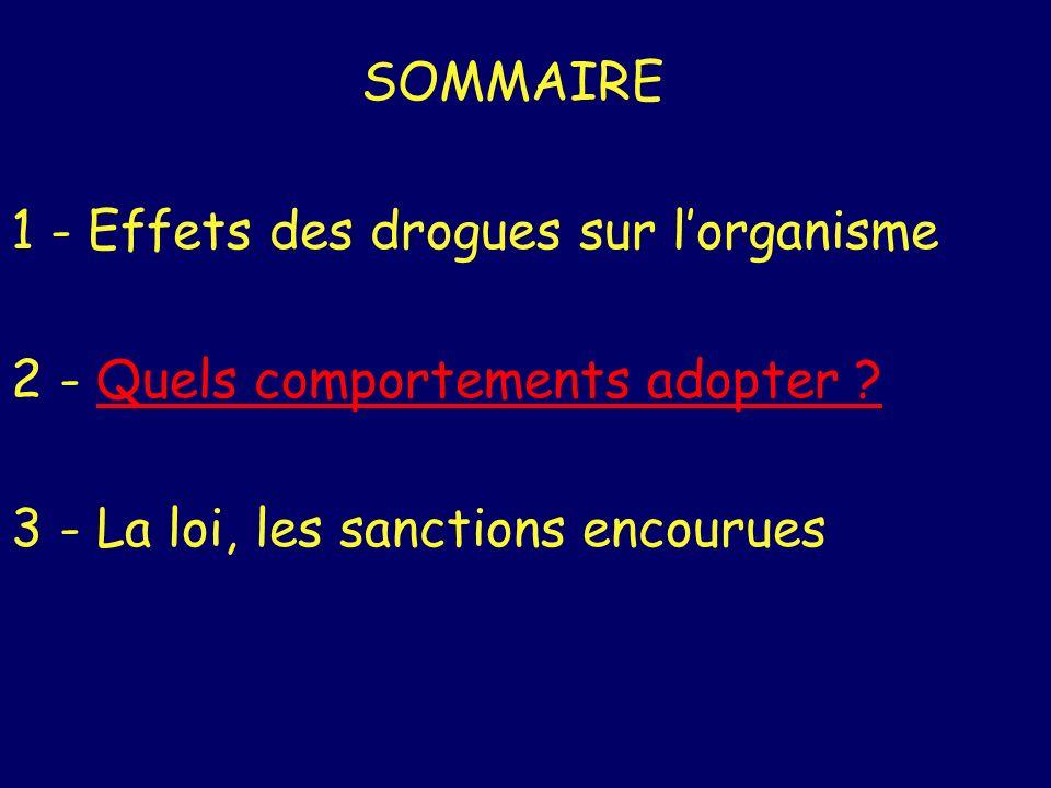 SOMMAIRE 1 - Effets des drogues sur lorganisme 2 - Quels comportements adopter ?Quels comportements adopter ? 3 - La loi, les sanctions encourues