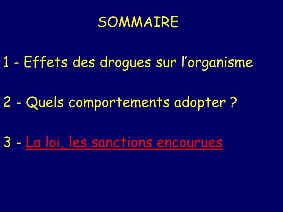 SOMMAIRE 1 - Effets des drogues sur lorganisme 2 - Quels comportements adopter ? 3 - La loi, les sanctions encouruesLa loi, les sanctions encourues