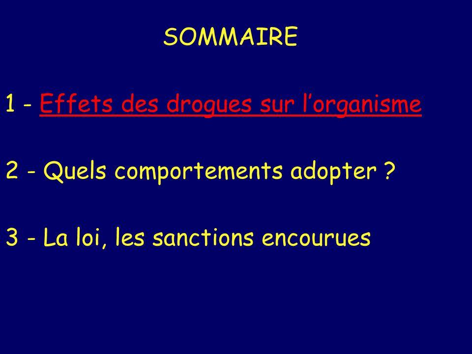 SOMMAIRE 1 - Effets des drogues sur lorganismeEffets des drogues sur lorganisme 2 - Quels comportements adopter ? 3 - La loi, les sanctions encourues
