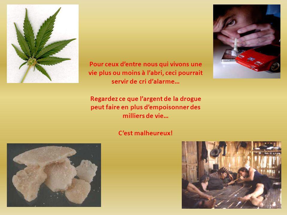 Pour ceux dentre nous qui vivons une vie plus ou moins à labri, ceci pourrait servir de cri dalarme… Regardez ce que largent de la drogue peut faire en plus dempoisonner des milliers de vie… Cest malheureux!