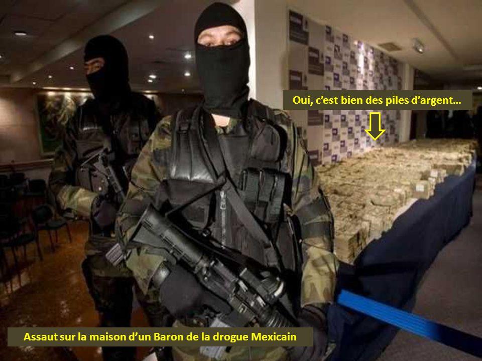 Assaut sur la maison dun Baron de la drogue Mexicain Oui, cest bien des piles dargent…