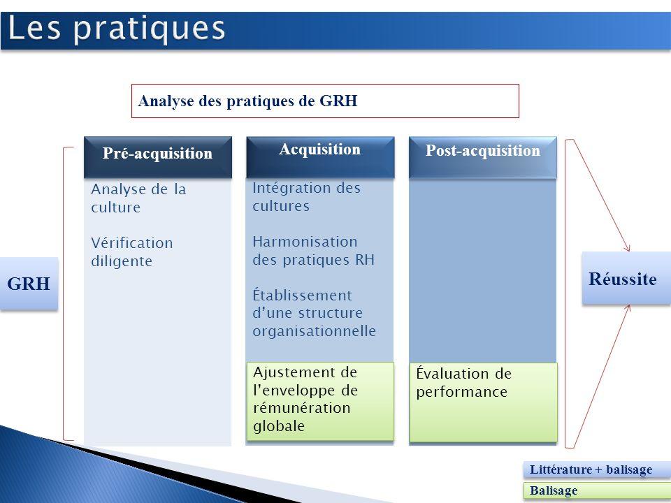 Intégration des cultures Harmonisation des pratiques RH Établissement dune structure organisationnelle Analyse de la culture Vérification diligente An