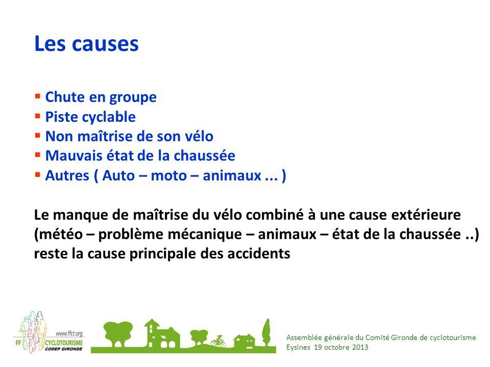 Assemblée générale du Comité Gironde de cyclotourisme Eysines 19 octobre 2013 Les causes Chute en groupe Piste cyclable Non maîtrise de son vélo Mauva