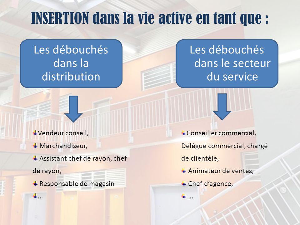 INSERTION dans la vie active en tant que : Les débouchés dans la distribution Les débouchés dans le secteur du service Vendeur conseil, Marchandiseur,