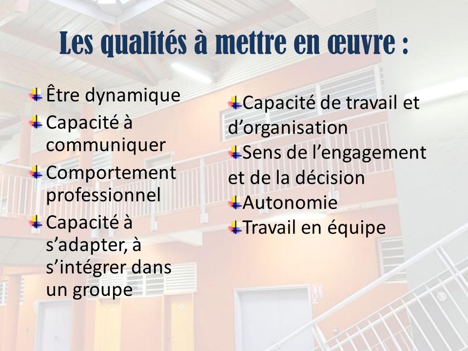 Les qualités à mettre en œuvre : Être dynamique Capacité à communiquer Comportement professionnel Capacité à sadapter, à sintégrer dans un groupe Capa