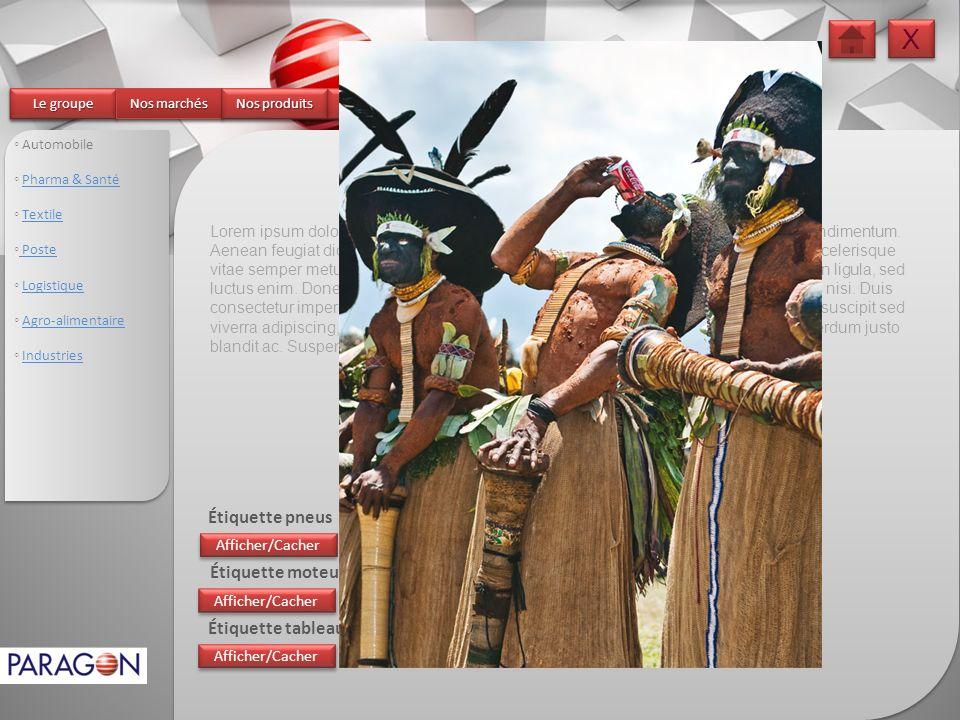 X X Le groupe Le groupe Le groupe Le groupe Nos marchés Nos marchés Nos marchés Nos marchés Nos produits Nos produits Nos produits Nos produits Nos se