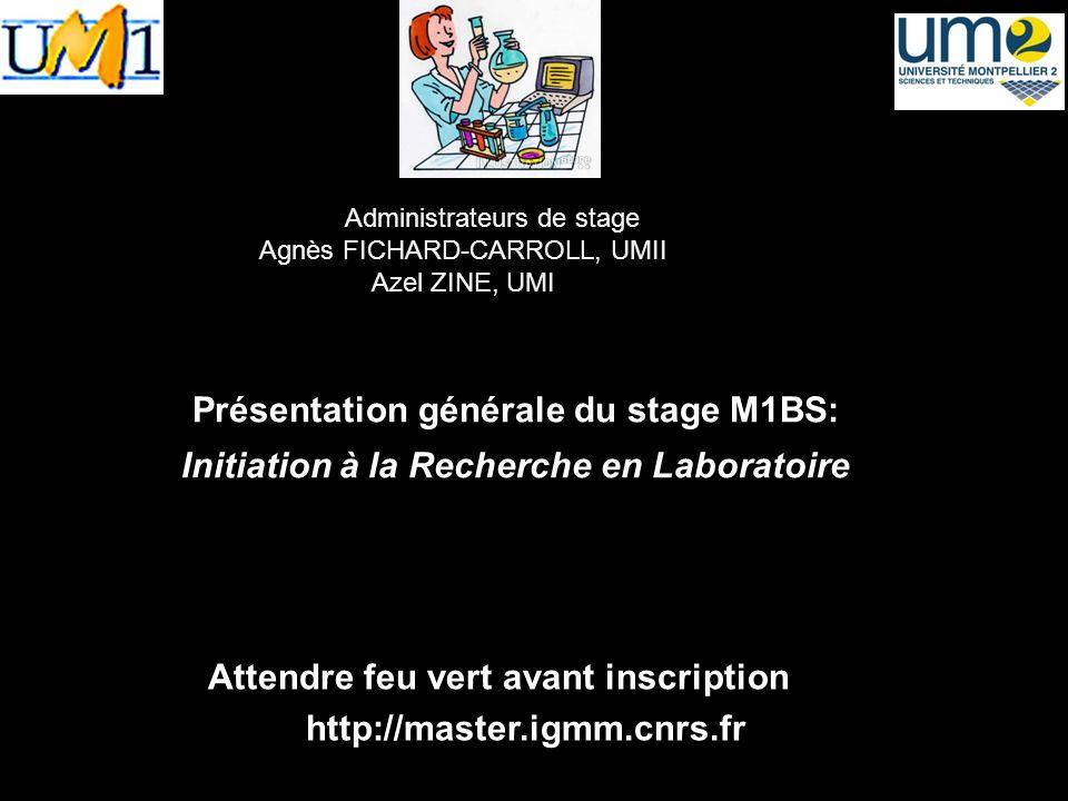 2 sites Le site du M1BS généraliste 2 inscriptions Le site des stages Inscription pédagogique Inscirption sur le site des stages