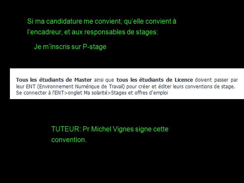 Si ma candidature me convient, quelle convient à lencadreur, et aux responsables de stages: Je minscris sur P-stage TUTEUR: Pr Michel Vignes signe cette convention.
