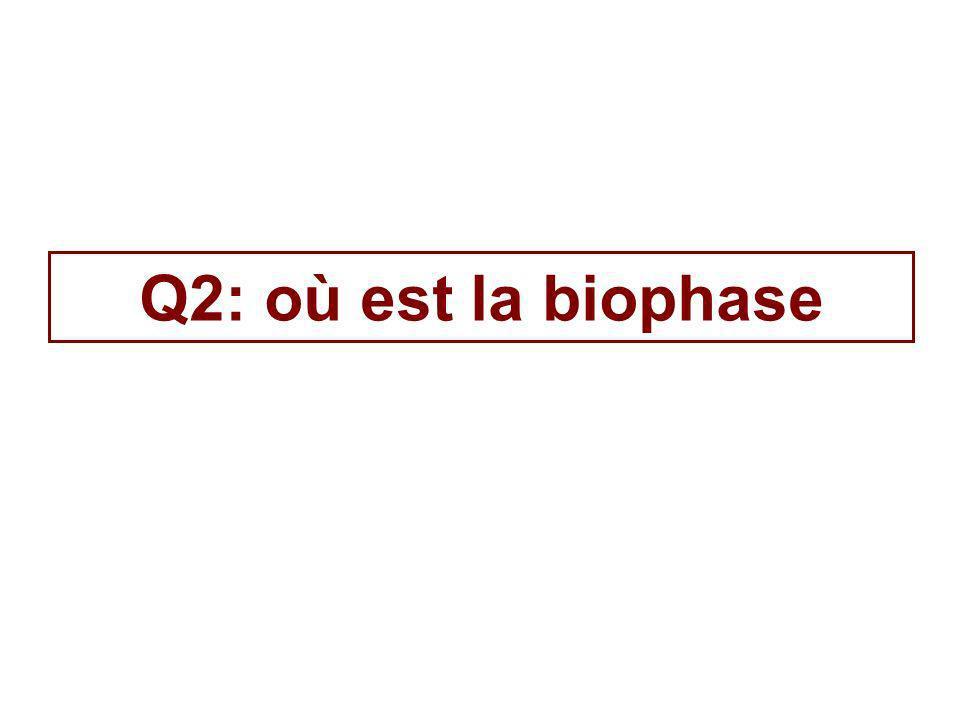 Q2: où est la biophase