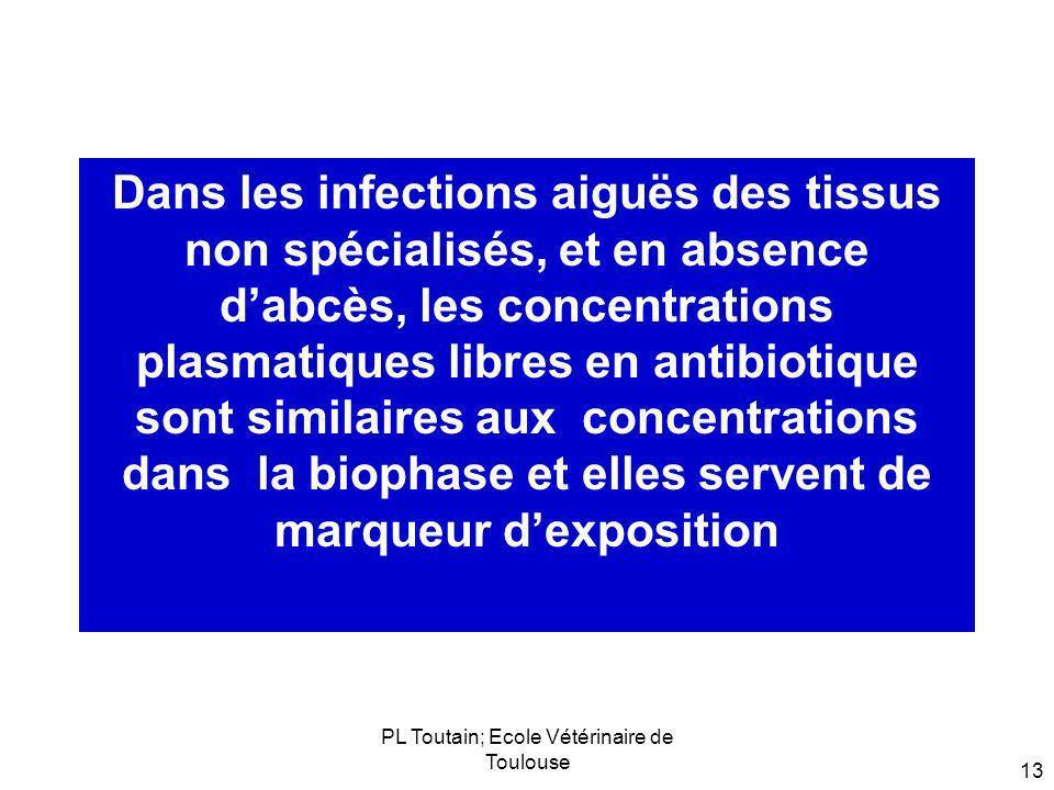 PL Toutain; Ecole Vétérinaire de Toulouse 13 Dans les infections aiguës des tissus non spécialisés, et en absence dabcès, les concentrations plasmatiq