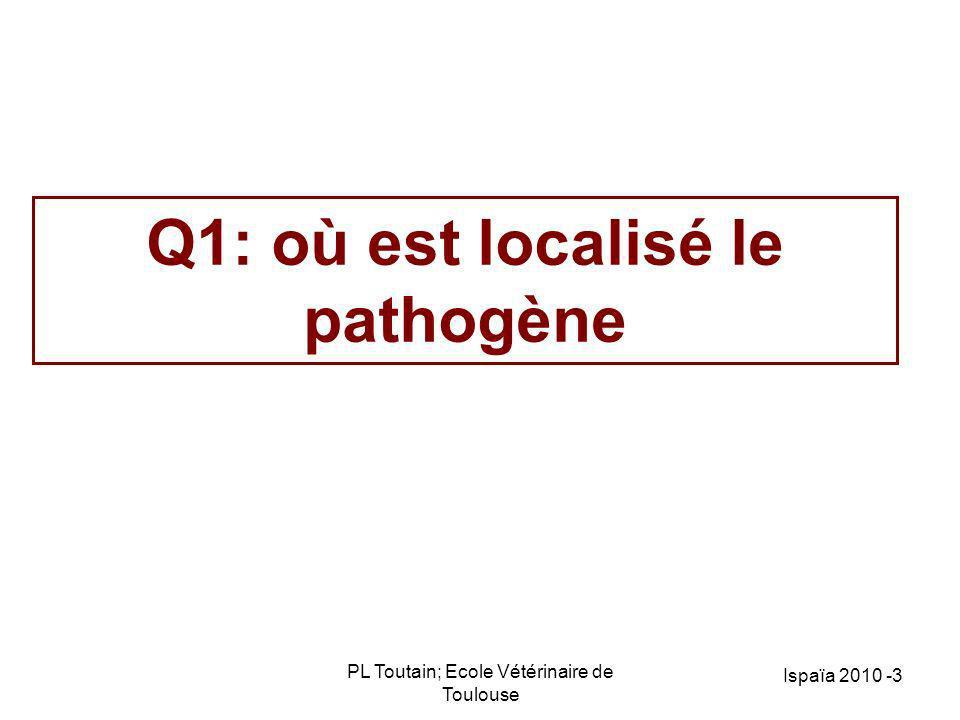 PL Toutain; Ecole Vétérinaire de Toulouse Ispaïa 2010 -3 Q1: où est localisé le pathogène