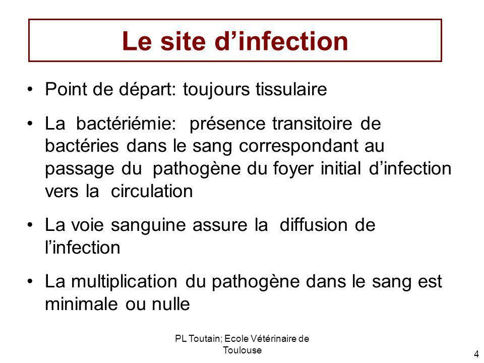 PL Toutain; Ecole Vétérinaire de Toulouse 4 Le site dinfection Point de départ: toujours tissulaire La bactériémie: présence transitoire de bactéries