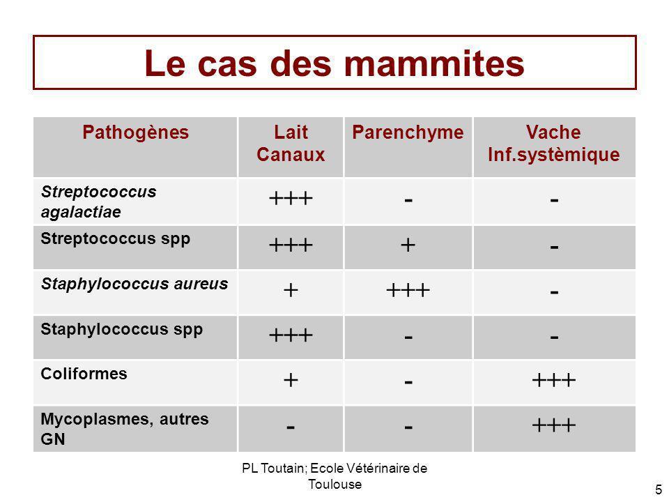 PL Toutain; Ecole Vétérinaire de Toulouse 5 Le cas des mammites PathogènesLait Canaux ParenchymeVache Inf.systèmique Streptococcus agalactiae +++-- St