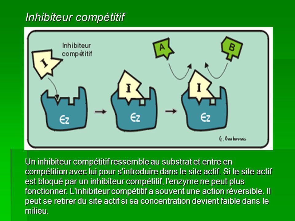 Un inhibiteur compétitif ressemble au substrat et entre en compétition avec lui pour s'introduire dans le site actif. Si le site actif est bloqué par