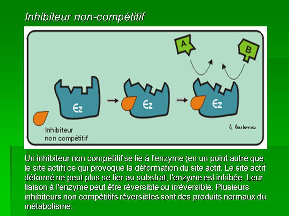 Un inhibiteur non compétitif se lie à l'enzyme (en un point autre que le site actif) ce qui provoque la déformation du site actif. Le site actif défor