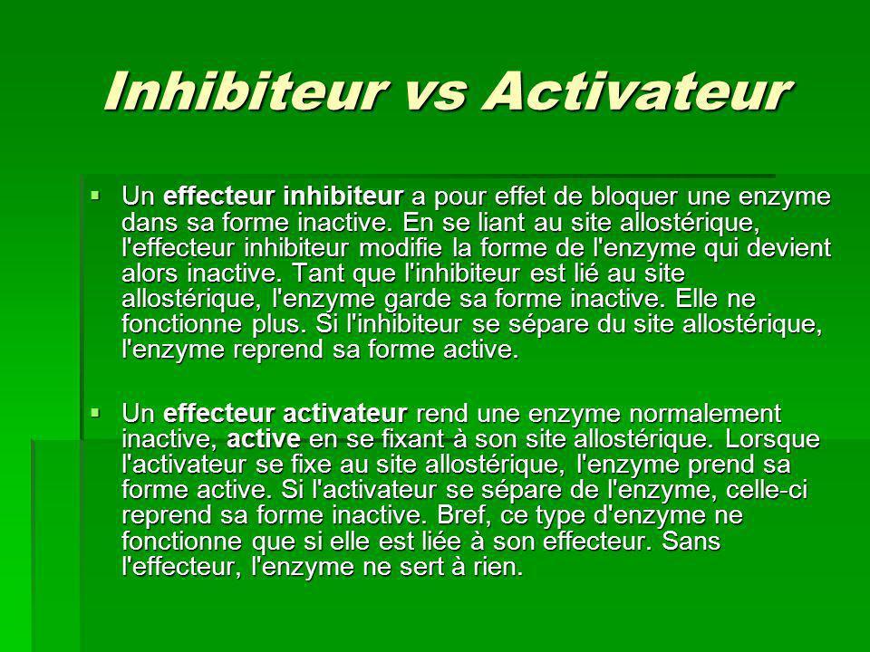 Inhibiteur vs Activateur Un effecteur inhibiteur a pour effet de bloquer une enzyme dans sa forme inactive. En se liant au site allostérique, l'effect