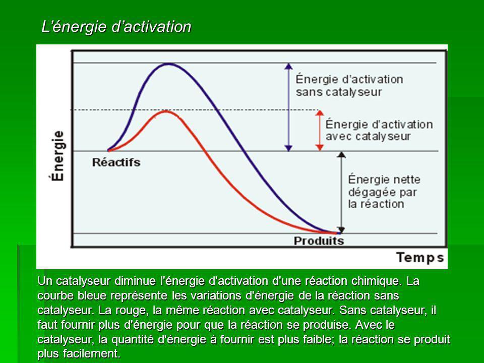 Lénergie dactivation Un catalyseur diminue l'énergie d'activation d'une réaction chimique. La courbe bleue représente les variations d'énergie de la r