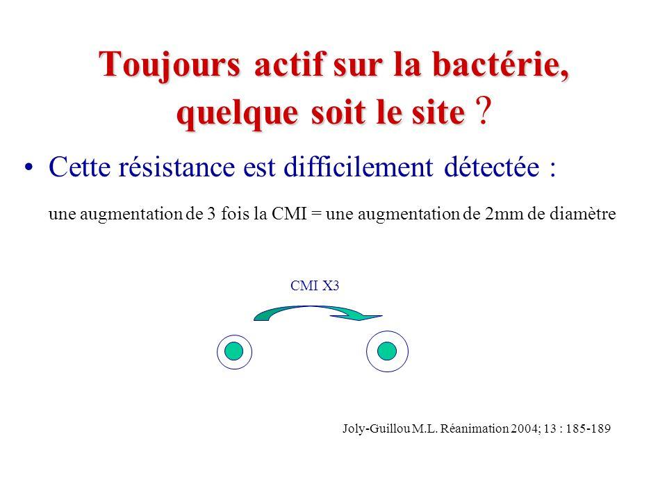 Pour être actif il faut [C] tissulaire = 4 X CMI et ce pour un temps de contact prolongé.