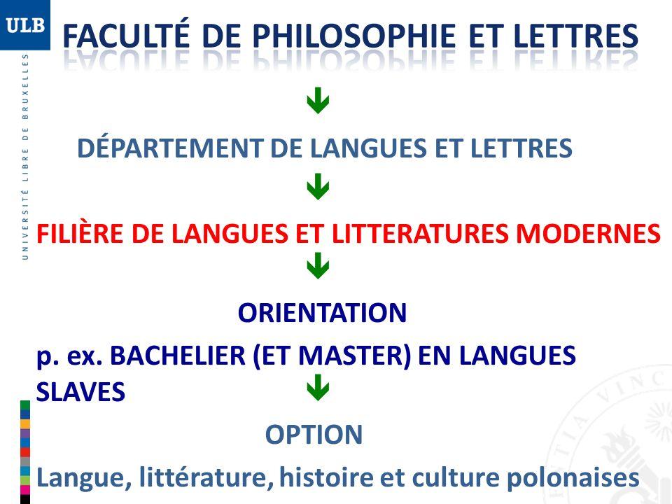 Au sein des Bacheliers et des Masters en Langues et littératures modernes, il y a différentes orientations qui caractérisent vos différents programmes de cours.