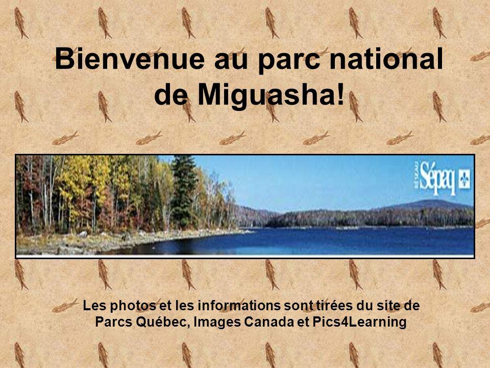 Bienvenue au parc national de Miguasha.