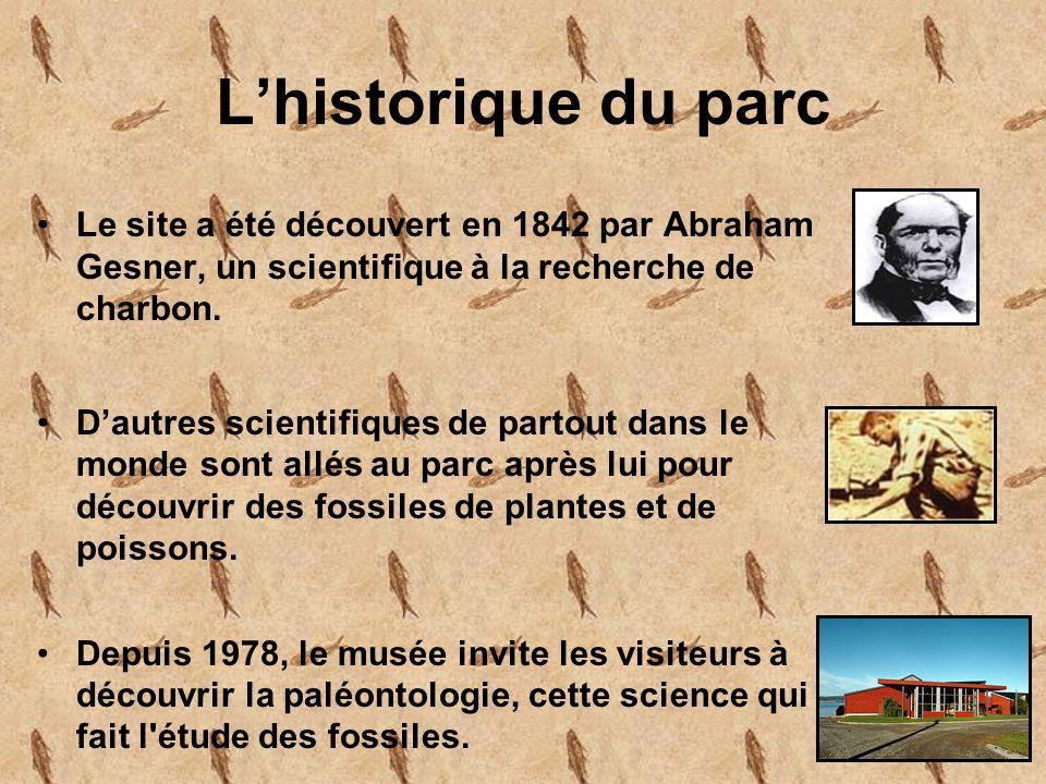 Lhistorique du parc Le site a été découvert en 1842 par Abraham Gesner, un scientifique à la recherche de charbon.