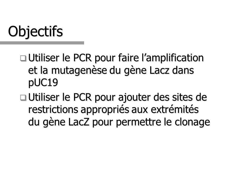 Objectifs Utiliser le PCR pour faire lamplification et la mutagenèse du gène Lacz dans pUC19 Utiliser le PCR pour faire lamplification et la mutagenèse du gène Lacz dans pUC19 Utiliser le PCR pour ajouter des sites de restrictions appropriés aux extrémités du gène LacZ pour permettre le clonage Utiliser le PCR pour ajouter des sites de restrictions appropriés aux extrémités du gène LacZ pour permettre le clonage
