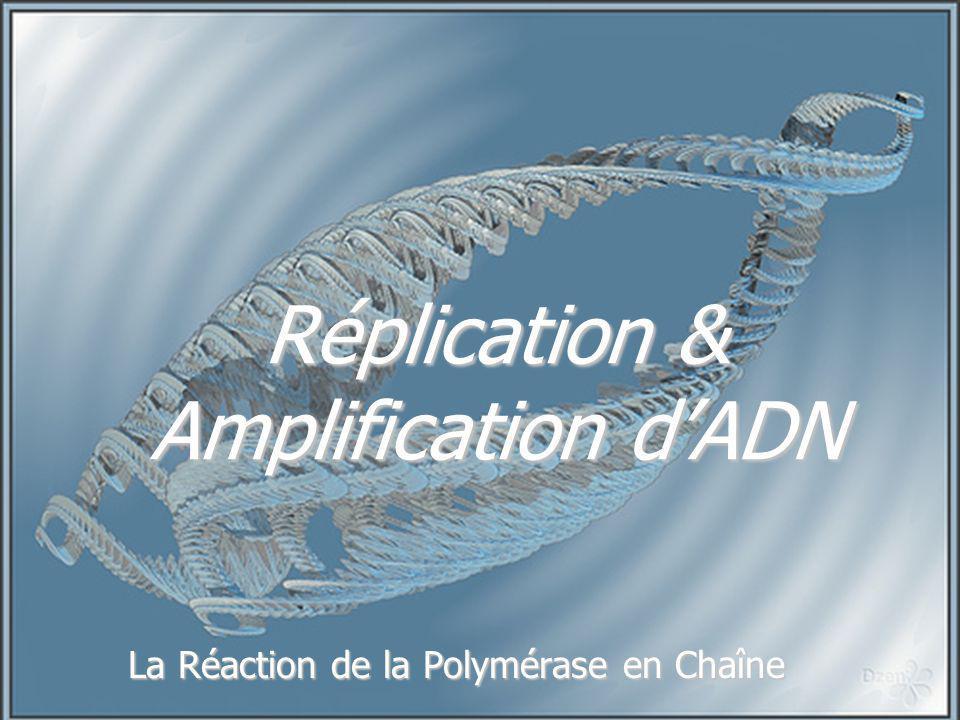 Réplication & Amplification dADN La Réaction de la Polymérase en Chaîne