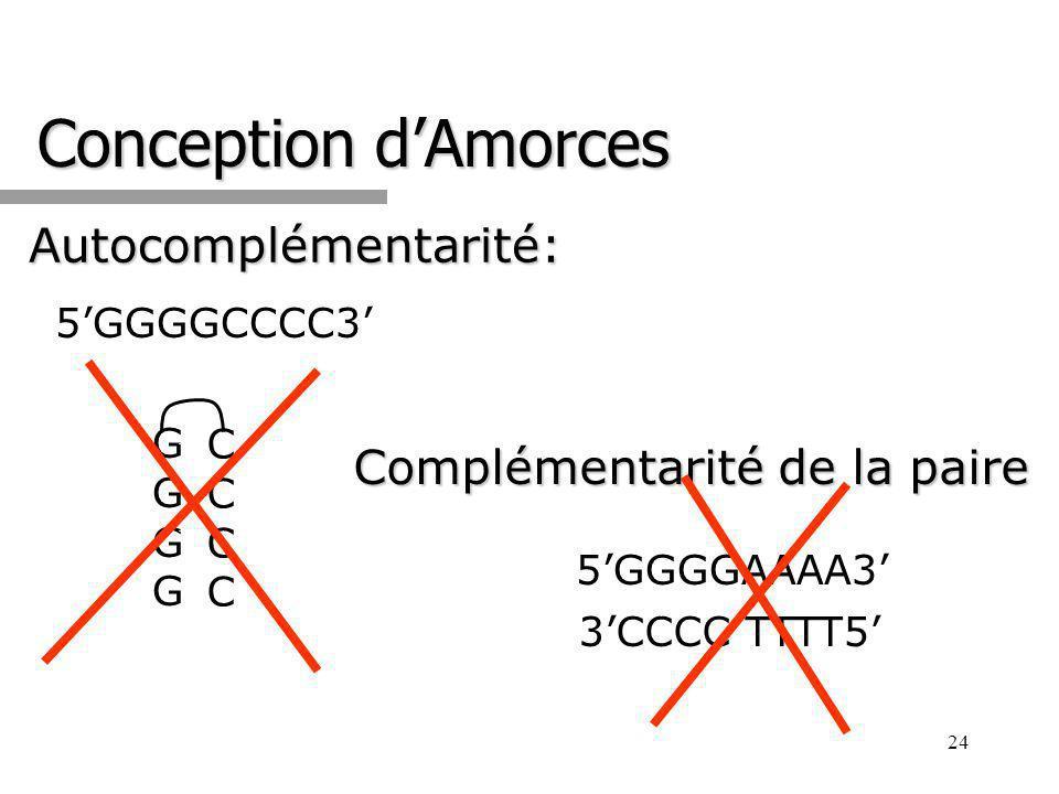 24 Conception dAmorces Autocomplémentarité: 5GGGGCCCC3 GGGGGGGG CCCCCCCC Complémentarité de la paire 5GGGGAAAA3 3CCCC TTTT5