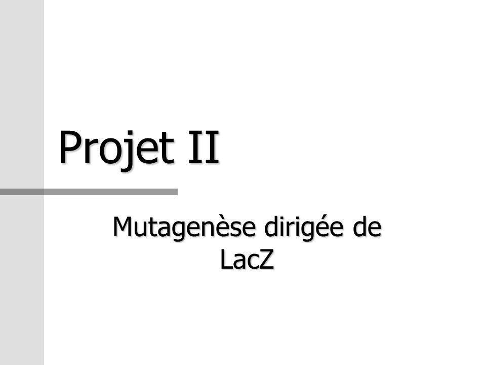 Projet II Mutagenèse dirigée de LacZ