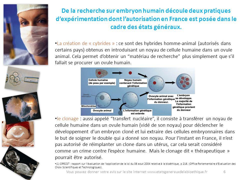 6 De la recherche sur embryon humain découle deux pratiques dexpérimentation dont lautorisation en France est posée dans le cadre des états généraux.