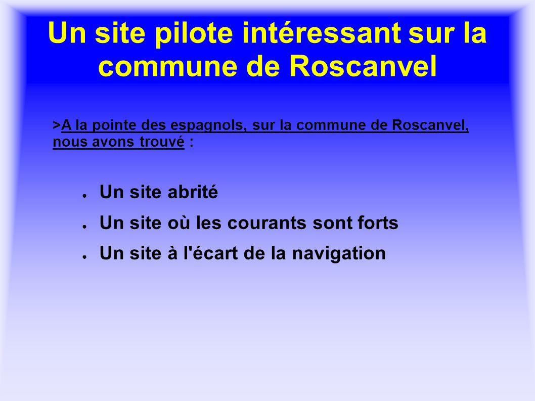 Un site pilote intéressant sur la commune de Roscanvel Un site abrité Un site où les courants sont forts Un site à l'écart de la navigation >A la poin