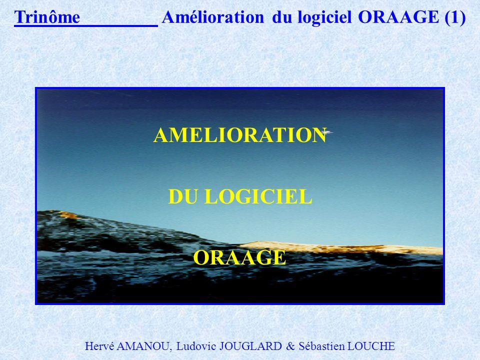 Binôme 2 Etude hydraulique du réseau d eaux pluviales du bassin versant du vieux Foix (10) Estimation des coûts : Facteur déterminant du choix de la s