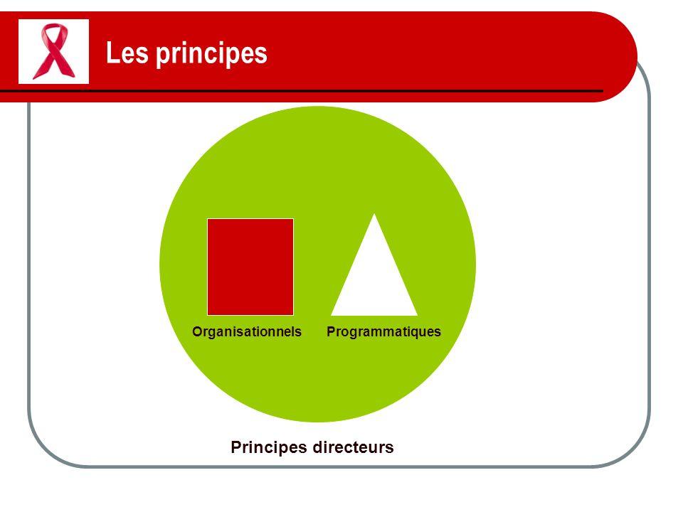 Les principes Principes directeurs OrganisationnelsProgrammatiques