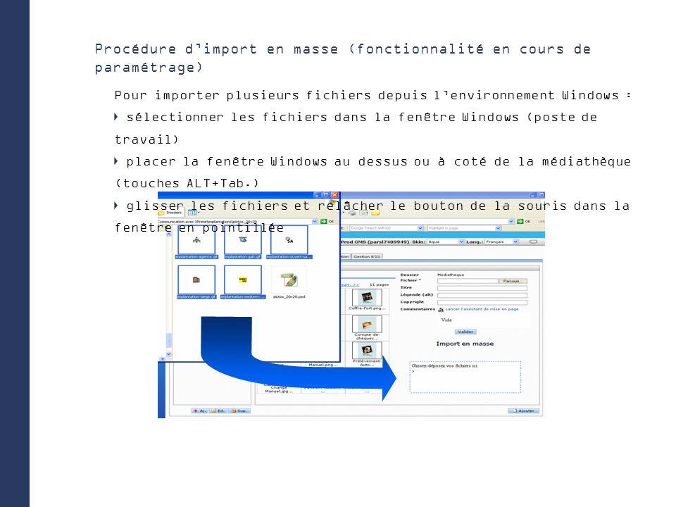 Procédure dimport en masse (fonctionnalité en cours de paramétrage) Pour importer plusieurs fichiers depuis lenvironnement Windows : sélectionner les fichiers dans la fenêtre Windows (poste de travail) placer la fenêtre Windows au dessus ou à coté de la médiathèque (touches ALT+Tab.) glisser les fichiers et relâcher le bouton de la souris dans la fenêtre en pointillée