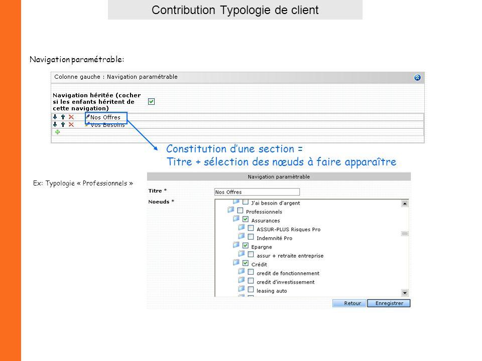 Constitution dune section = Titre + sélection des nœuds à faire apparaître Ex: Typologie « Professionnels » Navigation paramétrable: